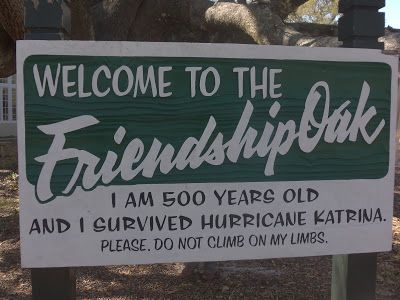 310 best Close to Home Mississippi images on Pinterest - copy birth certificate long beach