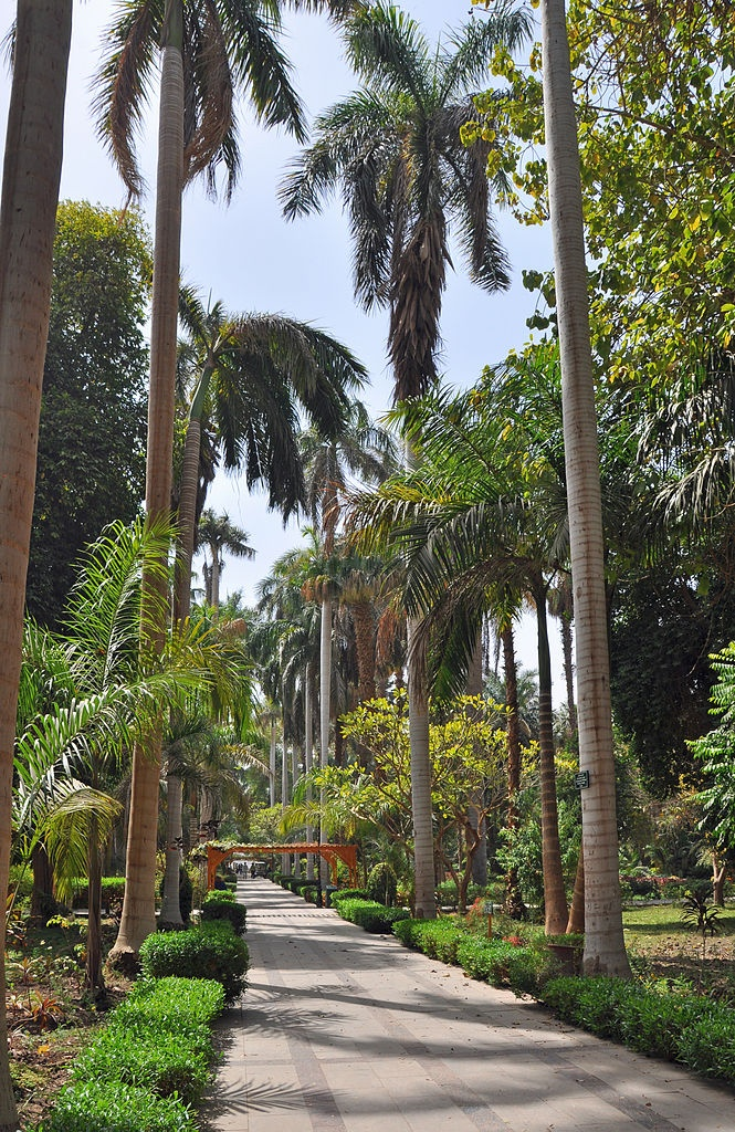 Kitchener's Island - Botanical Garden,  Aswan, Egypt
