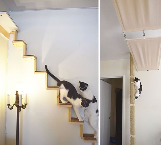 modular cat climbing system from ailuros workshop is a perfect fit for small spaces - Cat Climber
