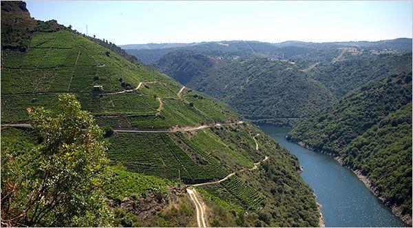 Ribeira Sacra, es una zona del interior donde se produce un vino DO - Galicia.