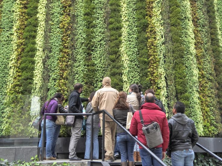 112 best images about jardines verticales on pinterest for Jardines verticales mexico