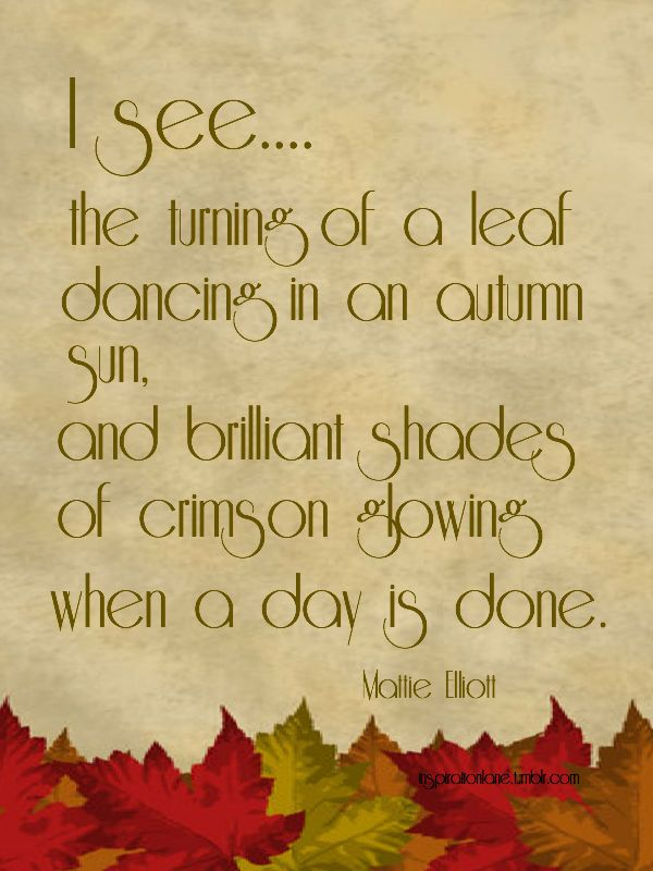 2770 Best Images About Fall Beauty.... On Pinterest Autumn Day, Autumn