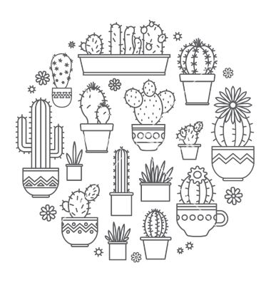 Linear design potted cactus elements. succulent vector - by Leyasw on…
