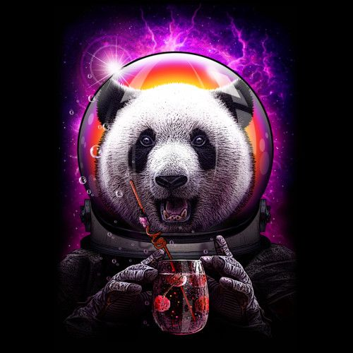 Good The Motor Panda In Space