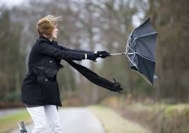 Image result for windy weather