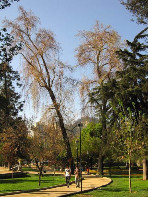 santiago chile casa y jardines picture   Parque Forestal, Santiago, Chile