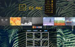 Мои сайты   Wix.com