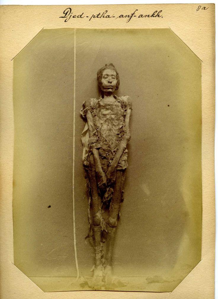 Jan Herman Insinger (1854-1918) - Gemummificeerd lichaam van een man genaamd Djed-ptah-anf-ankh, 1886 - Fotos de Egipto en el siglo XIX - 20minutos.es
