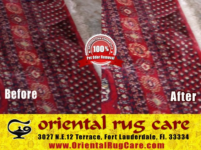 Cleaning Area Rugs Services in Florida