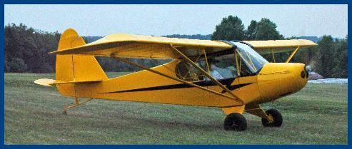 Tiger Cub aircraft, Light Sport and Experimental airplane, plans and kits.