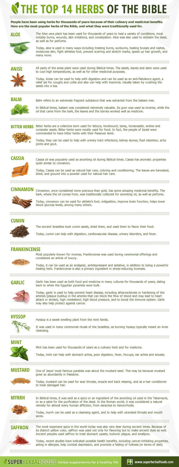 The top 14 herbs of the bible http://www.superherbalfoods.com/herbal-remedies/top-fourteen-herbs-of-the-bible.php