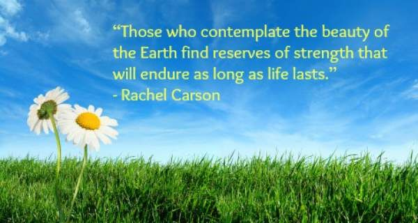 Happy Earth Day 2017, earth day Quotes, earth day Slogans, earth day Pictures, earth day posters, earth day Greetings, earth day Wishes, earth day Status