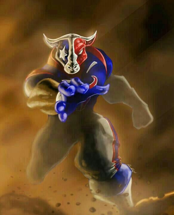 El Toro | Houston Texans | Texans football, Texans ...