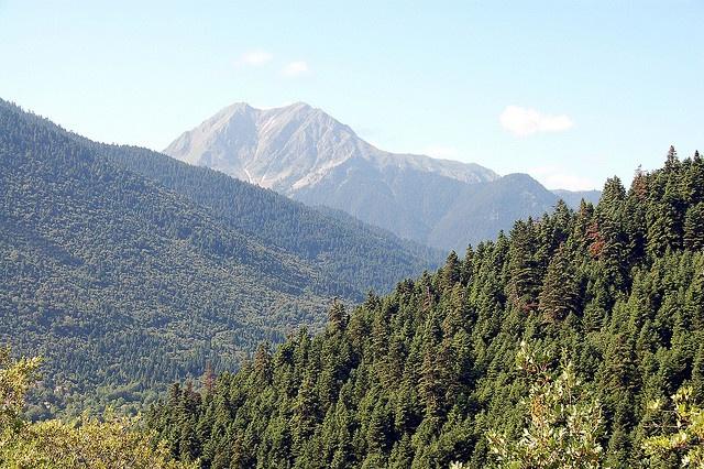 View of Mount Kaliakoudha from Voutiro Karpenisi