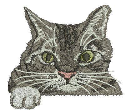 chat de poche motifs de broderie Machine par embroiderypapatedy