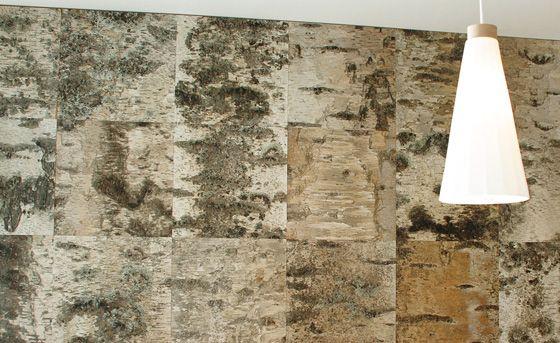 Einmaliges Wandpaneel aus Birkenrinde. Ausdrucksstark und ein absoluter Blickfang