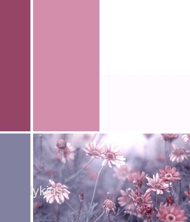 Pink Farbe Paint Altrosa Creme Und Grau K Altrosa Farben Rosa