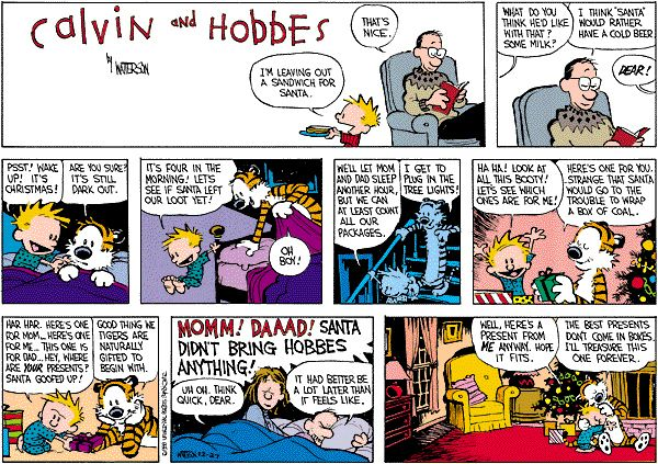 Sometimes your favorite gift will surprise you. | The 24 Most Valuable Christmas Lessons From Calvin And Hobbes