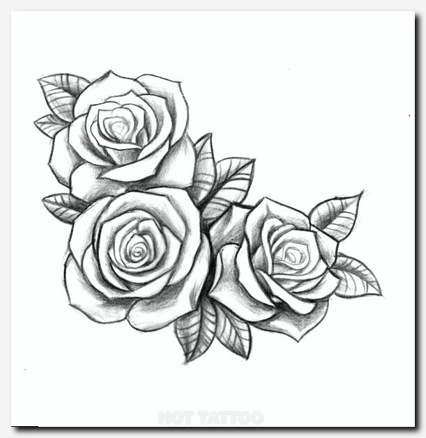 Tattoo Ideas With Roses: Tattoos, Rose Drawing