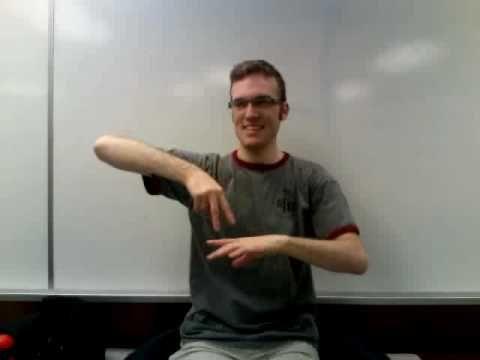 ASL Translation of Defying Gravity (GLEE)