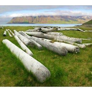 Les 25 meilleures id es tendance troncs de bois sur for Barriere bois flotte
