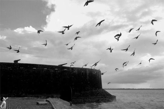Ao chegar a Belém vindo de São Luís do Maranhão, com três navios e 200 homens sob seu comando, Castello Branco começou a erigir uma fortificação de taipa e palha, guarnecendo-a com doze peças de artilharia. Nela colocou o nome de Forte do Presépio de Belém, um tributo ao dia de Natal, data em que saíra do Maranhão.