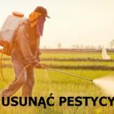 pestycydów