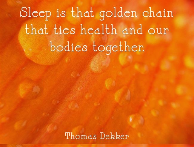 When I studied Holistic Lifestyle Coaching we learned very quickly about the forgotten health benefits of sleep.