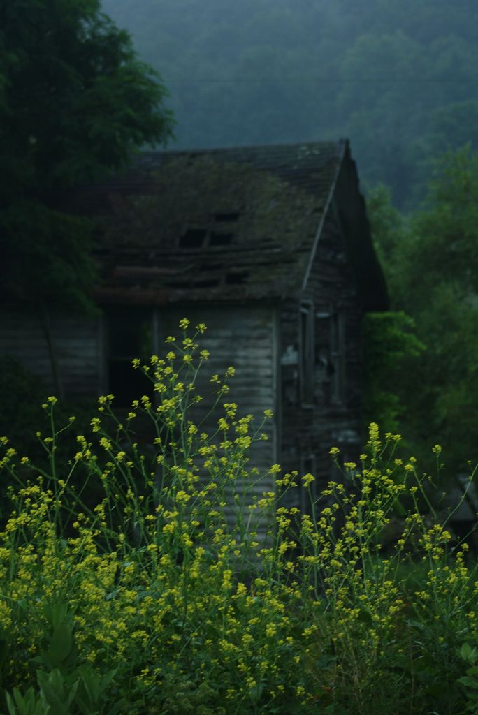 An old farmhouse down the road I have photographed before. Taken just after a summer rain.