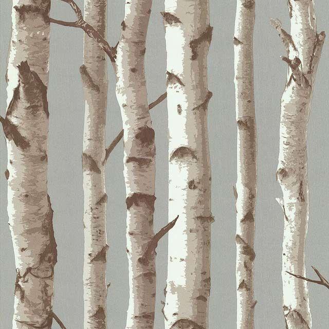 Best 25 Papier Peint Bouleau Ideas On Pinterest