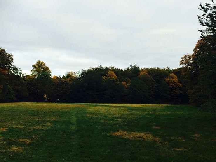 Autumn Denmark 2015