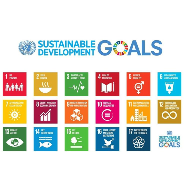 In September 2015 the United Nations launched 17 goals to end poverty protect the planet and ensure prosperity for all as part of a new sustainable development agenda. Each goal has specific targets to be achieved by 2030. #goal13 #SDGs #sustainabledevelopmentgoals #globalgoals #climatechange #climateaction #unitednations #parisagreement #endpoverty #nopoverty #zerohunger #goodhealthandwellbeing #qualityeducation #genderequality #clearwater #cleanenergy #partnershipforthegoals #peace…