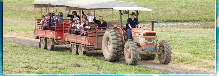 Calmsley Hill City Farm (Formerly Fairfield City Farm)   Animal Farm, Functions, Sustainable Learning, Education   Sydney