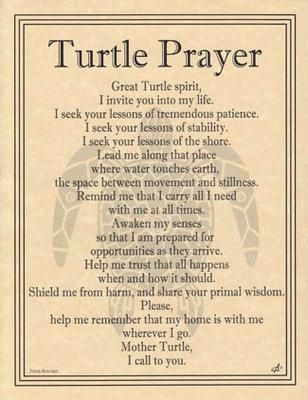 Turtle Prayer