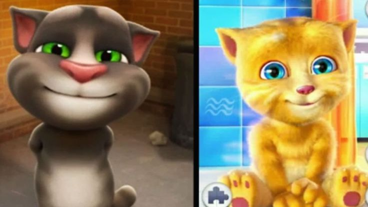 My Talking Ginger VS Cat Tom Funny Reactions - new episode for kids