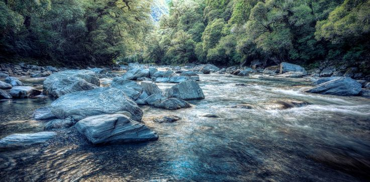 Up river - Haast Pass, Thunder Creek falls, New Zealand, instead of the typical falls I preferred the river and jumping into the middle of it for a different perspective..