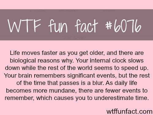 Why life seems like it's moving faster - WTF fun facts - http://didyouknow.abafu.net/facts/why-life-seems-like-its-moving-faster-wtf-fun-facts