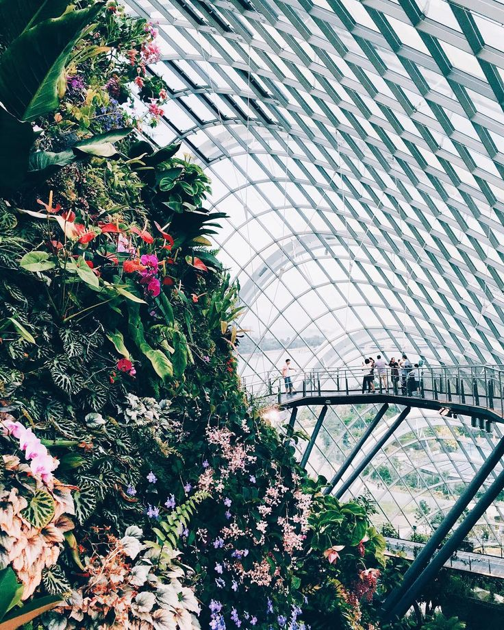 """The Flower Dome in Singapore 😍"" Follow me on Instagram @oceanspirit for more traveling pictures"