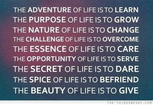 The adventure of life is to learn...