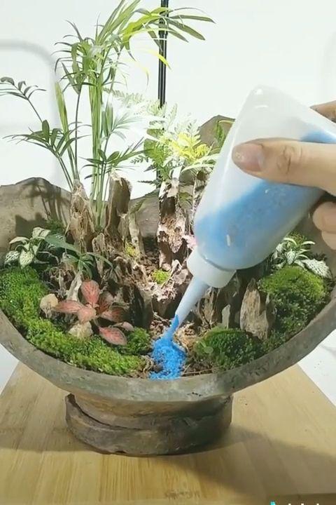 Creative Gardening Ideas 🌲