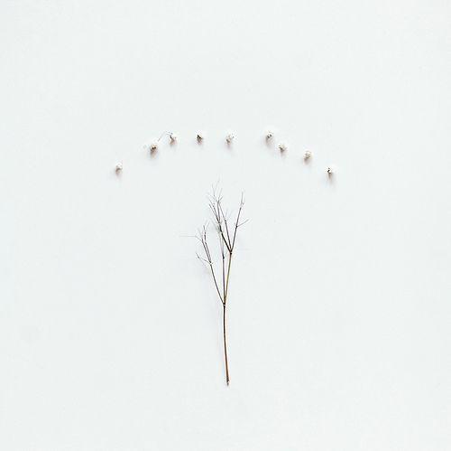 pure-and-honest:    Feels like flower (by sasha_karelina)