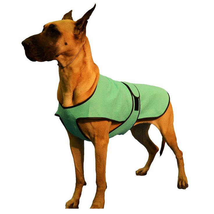Dog Cool Coat custom made just for your dog with tummy cooler for extra cooling - pinned by pin4etsy.com