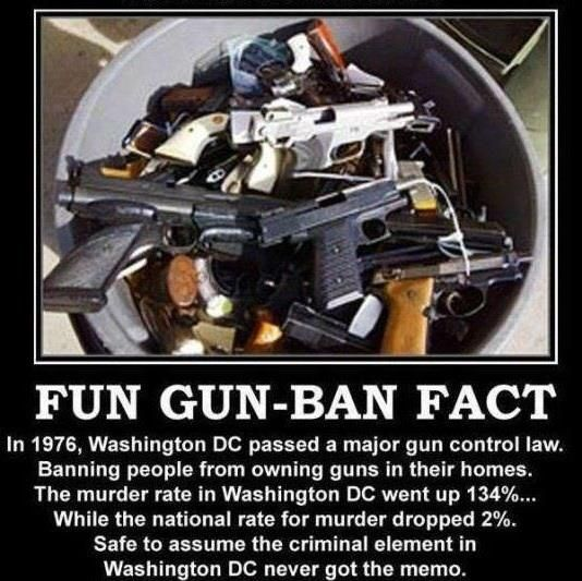 If guns are banned, only criminals and thugs will have guns!  They already don't obey the law!