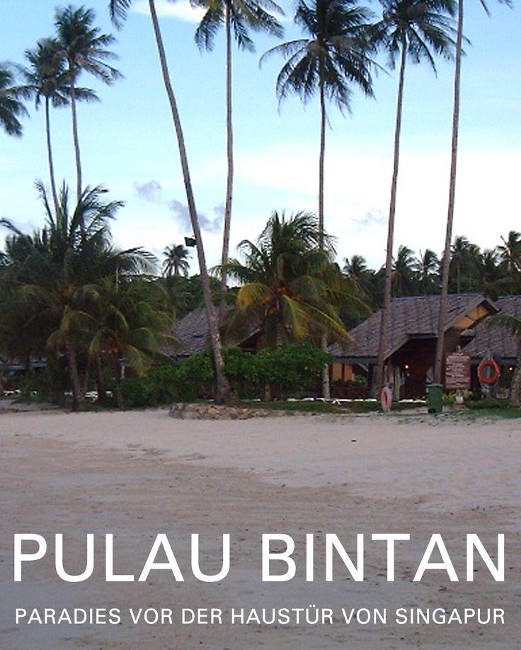 Nur rund eine Stunde außerhalb des Stadtstaates Singapur liegt Bintan Resorts an der Nordküste der Insel Bintan, der größten der bezaubernden Riau Inseln Indonesiens im Südchinesischen Meer.  #Bintan #PulauBintan #MayangSari #MayangSariBintan #NirwanaBintan #NirwanaResortBintan #AngsanaBintan #BanyanTreeBintan #BintanLagoon #BintanLagoonResort #BintanLagoonHotel #SingapurTourismus #SingaporeTourismus #TourismusSingapur #TourismusSingapore #Tourismustv