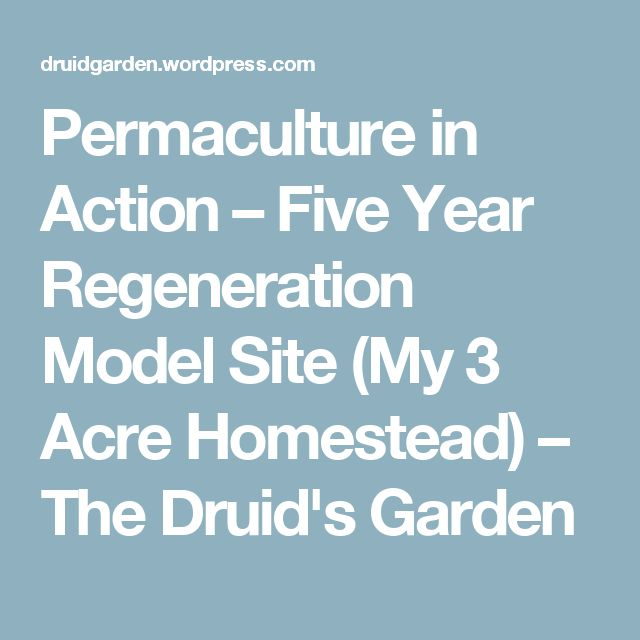Permaculture in Action – Five Year Regeneration Model Site (My 3 Acre Homestead) – The Druid's Garden