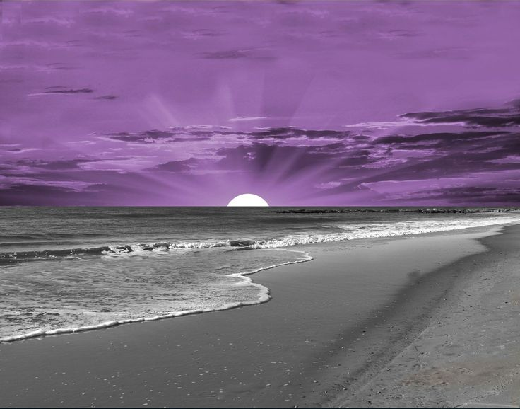 Coastal Beach Wall Decor, Purple Gray Bathroom Bedroom Wall Art Matted Picture