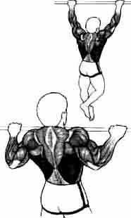 Traction Musculation mains en pronation