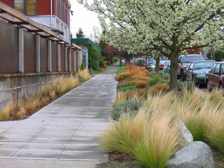 Curb Landscape Landscape By Design Pinterest Gardens