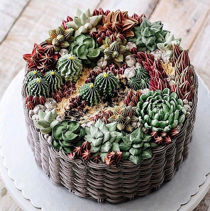 Realistiche piantine grasse su una torta: la perfezione del cake design