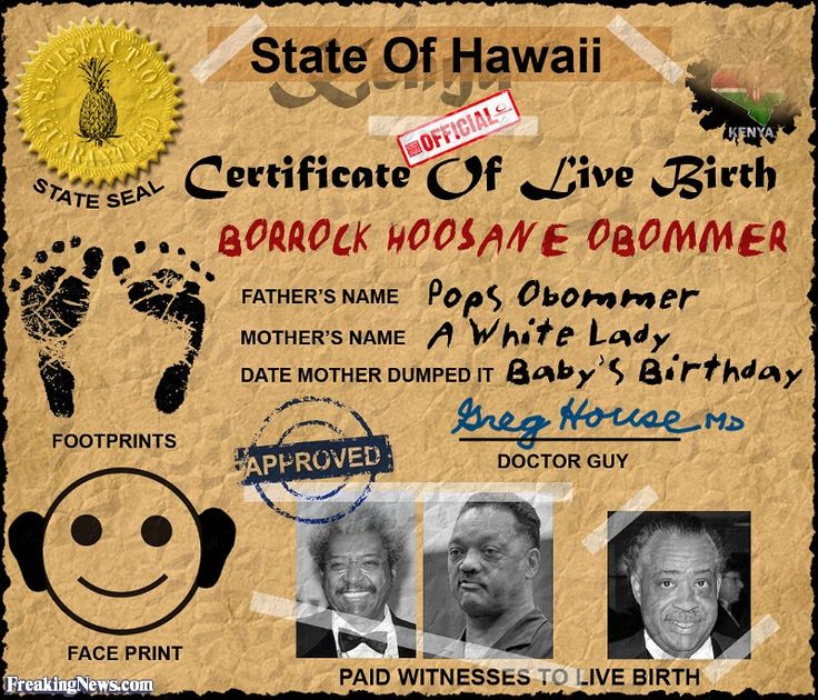 The 25+ best Original birth certificate ideas on Pinterest Obama - birth certificate